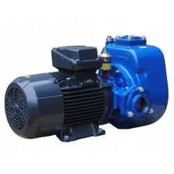 Электрический насос B30-180 BVGMC